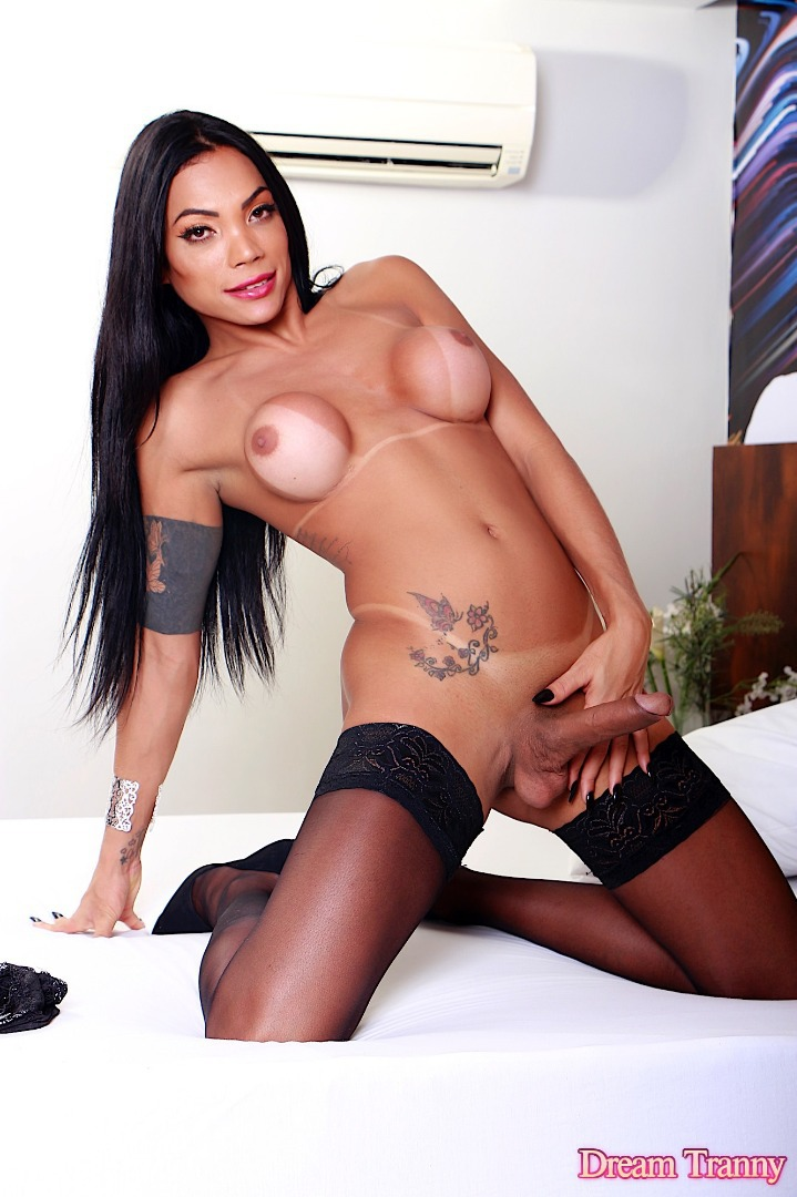 eva angelina patm standart march cleaned