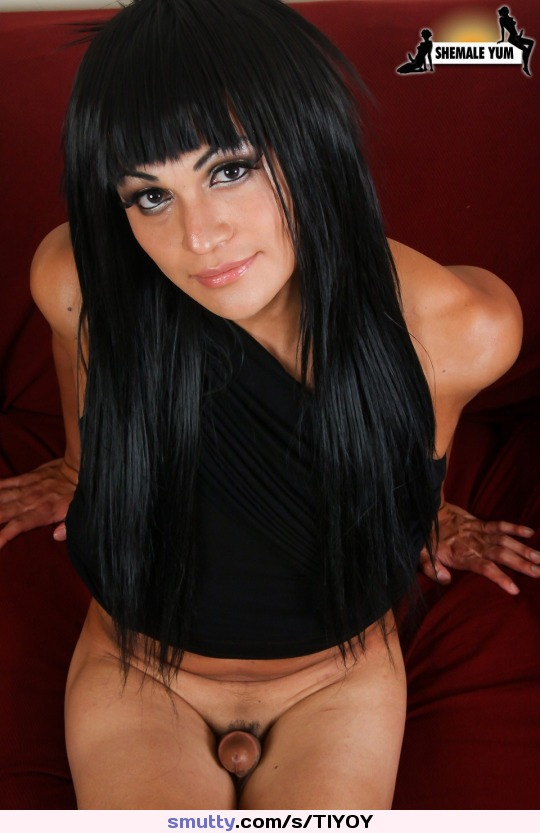 luv fucking meaty shaved pussy of arab wife missionary